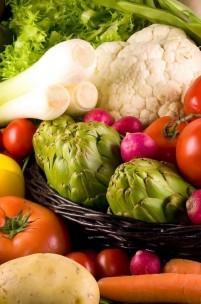 2050: Como alimentar 9 mil milhões de pessoas?