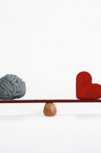 Um QI elevado é sinónimo de inteligência?