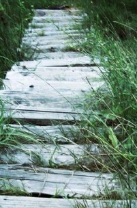 O Ascendente no mapa natal: o caminho da nossa casa