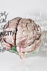 A mente (quase) surpreendente