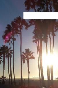 Os sons de Venice Beach