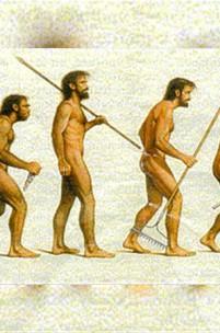 Uma evolução em nada evoluída